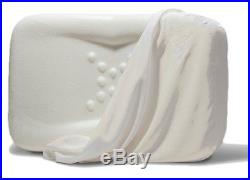NEW Envy SILK Anti Aging and Therapeutic Memory Foam Pillow